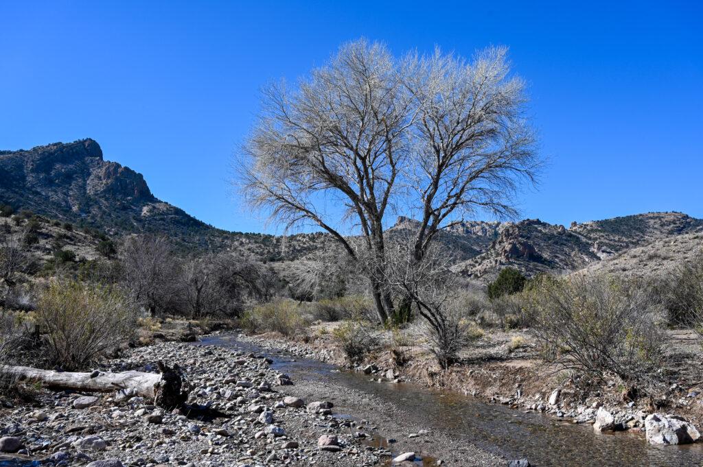 Unterwegs in New Mexico
