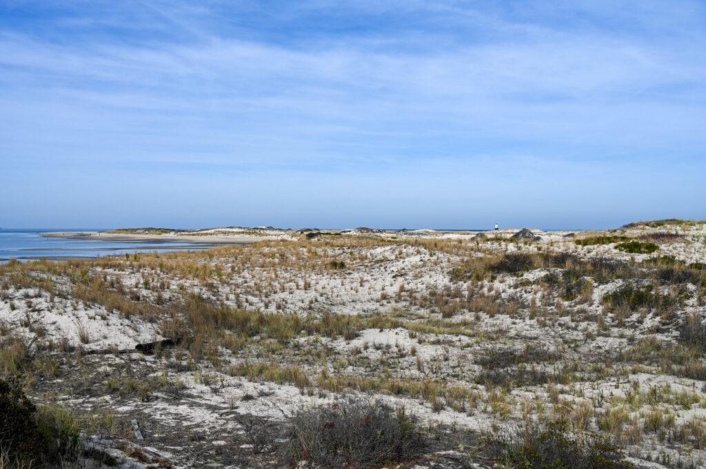 Cape Henloppen State Park
